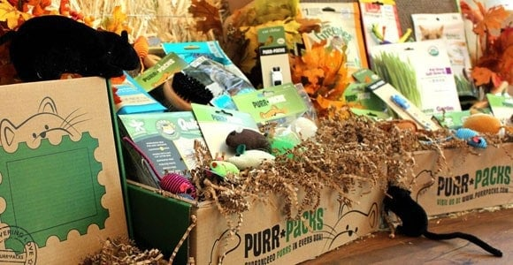 Purr-Pack Monthly Pet Subscription Box for Cats
