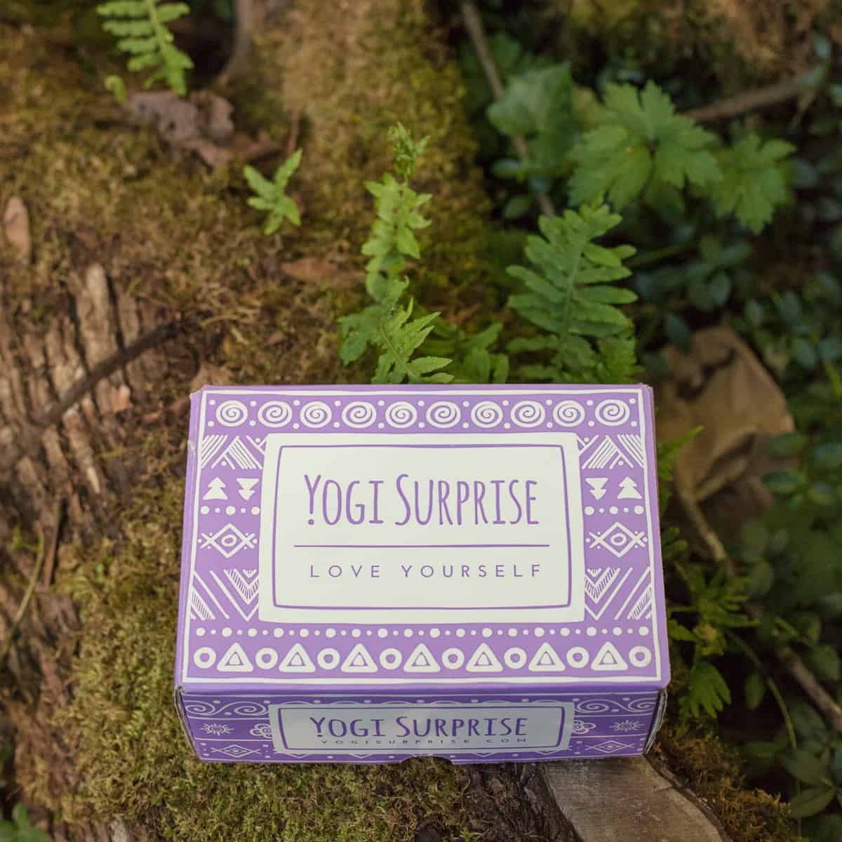 Yogi Surprise Subscription Box