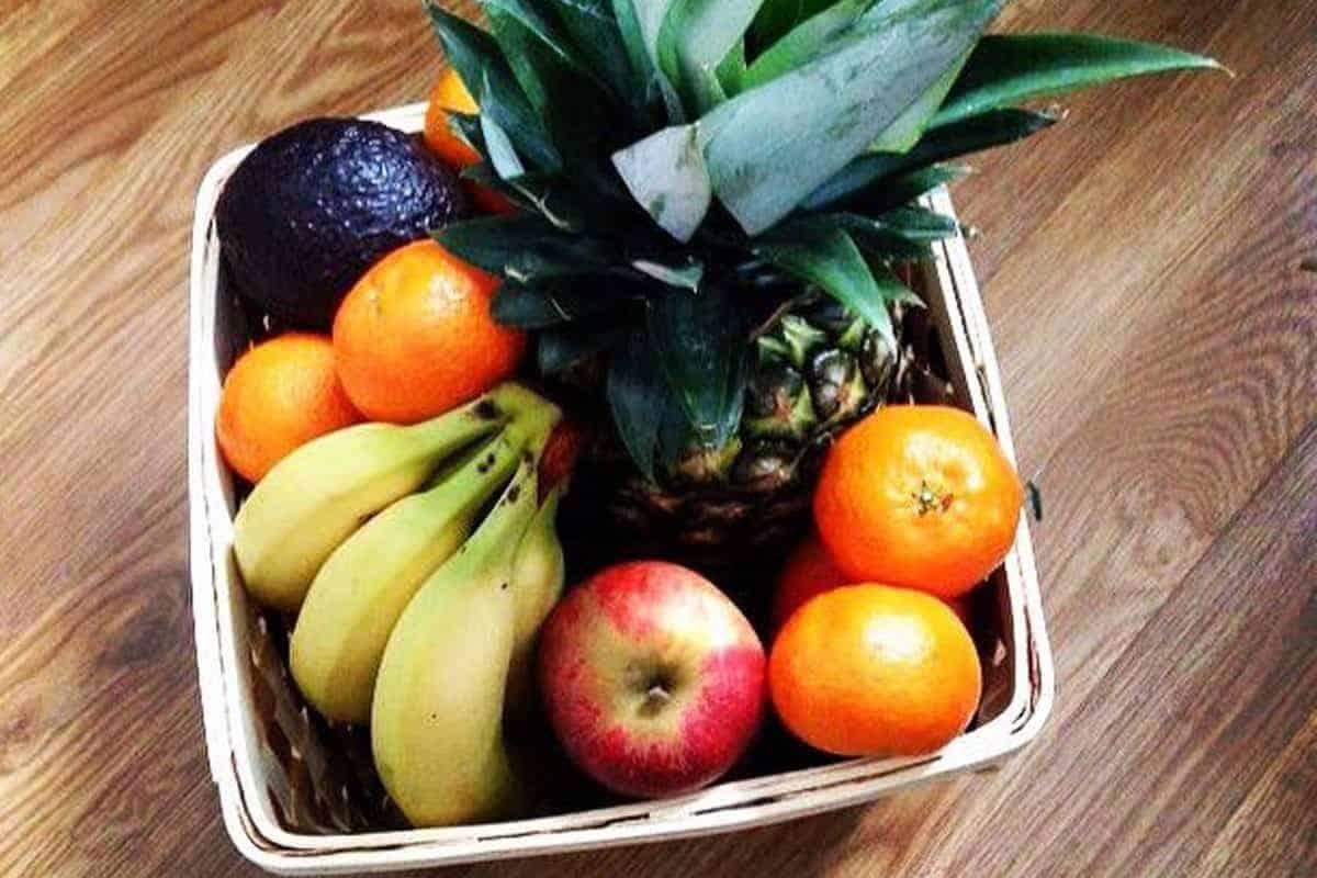 fruitkit - Fruit on Autopilot