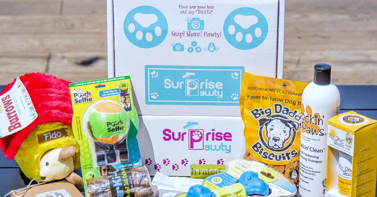 Surprise Pawty Subscription Box